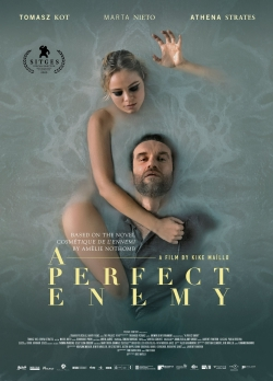 A Perfect Enemy-watch
